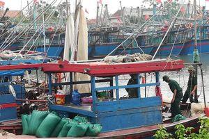Đẩy lùi hoạt động khai thác hải sản 'tận diệt'