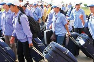 Ưu đãi tín dụng đối với người lao động tại huyện nghèo đi làm việc ở nước ngoài ra sao?