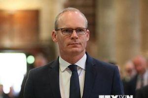 Ngoại trưởng Ireland muốn Anh sớm thay đổi lập trường và đàm phán