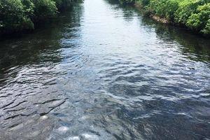 Truy nguyên nhân nước sông Vinh chuyển màu đen, bốc mùi hôi thối