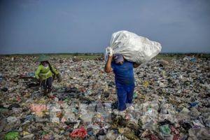 Ngành tái chế rác thải của Australia thất thu hơn 200 triệu USD mỗi năm