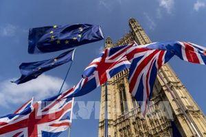 Châu Âu bác mọi thỏa thuận về Brexit thiếu điều khoản 'chốt chặn'