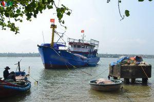 Nhiều chủ tàu cá ở Quảng Trị bị ngân hàng kiện ra tòa