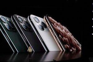 Giá iPhone 11 về Việt Nam cao nhất 44 triệu đồng, chưa cho đổi máy cũ lấy máy mới