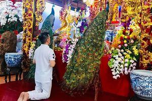 Đàm Vĩnh Hưng 'ăn mảnh' cúng Tổ nghiệp, dâng lễ vật độc lạ