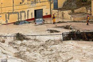 Mưa lụt gây hỗn loạn ở Tây Ban Nha, 250.000 học sinh phải nghỉ học