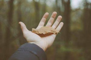 Liều thuốc chữa lành vết thương lòng