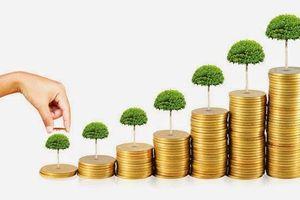 Trong tháng 8/2019, Cục Thuế Đắk Lắk thu ngân sách nhà nước đạt 390 tỷ đồng