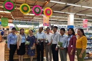 Tái cơ cấu nông nghiệp, Bình Sơn phát triển sản xuất