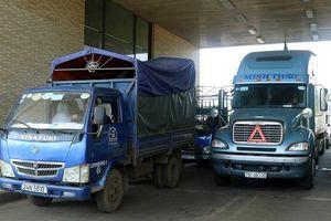 Đằng sau việc Trung Quốc giảm mạnh mua hàng Việt
