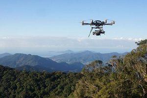 Sử dụng máy bay không người lái nghiên cứu rừng rậm Amazon