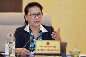 Chủ tịch Quốc hội 'rất sốt ruột' với Dự án Sân bay Long Thành