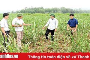 Huyện Thạch Thành nâng cao chất lượng đội ngũ cán bộ cơ sở, cán bộ người dân tộc thiểu số