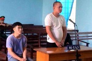Ba thanh niên trộm chó liên tỉnh lĩnh án