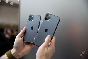 iPhone 11 Pro Max được người dùng quan tâm, màu xanh gây sốt