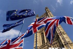 Hiệp hội doanh nghiệp lớn nhất châu Âu cảnh báo về 'Brexit cứng'