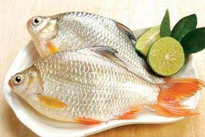 Món ăn bài thuốc từ cá chữa xuất tinh sớm ít người biết