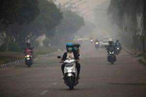 Indonesia: Ô nhiễm không khí 'nguy hiểm' ở Borneo, nhiều trường học phải đóng cửa