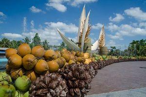 Lễ hội xứ Dừa