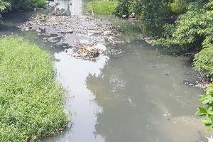 Kiến nghị giải pháp để giải cứu kênh rạch ở TP.HCM