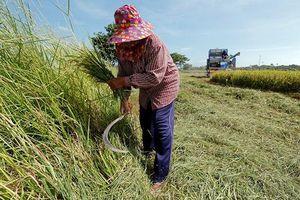 Tạo sức bật mới cho nền kinh tế Thái-lan
