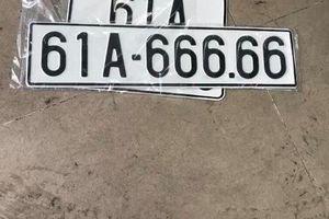 Bốc ngẫu nhiên được biển số 61A 666.66