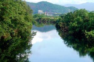 5 km nước sông Vinh chuyển màu đen
