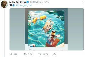 Miley Cyrus liên tục tương tác với Rosé (BlackPink) trên mạng xã hội, có thể hy vọng về màn collab 'khủng' thì tương lai?
