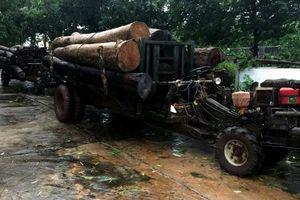 Phát hiện hai xe công nông chở gỗ lậu trên đường