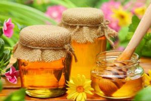 Những thực phẩm nào kỵ mật ong?