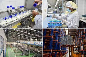 Khám phá nhà máy hãng sữa được trao tặng Huy hiệu Hoàng gia Hà Lan