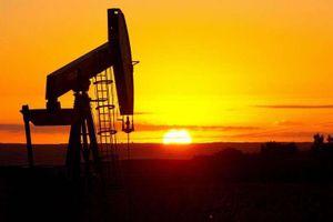 Thị trường dầu mỏ vẫn tê liệt sau vụ tấn công ở Ả Rập Xê-út