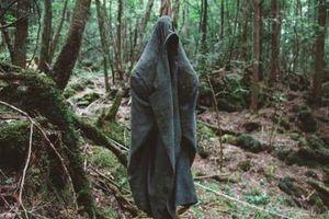 Đầu lâu, dây treo cổ ngổn ngang trong rừng tự sát ở Nhật Bản