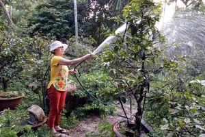 Nông dân Đà Nẵng học tập và làm theo Bác Hồ