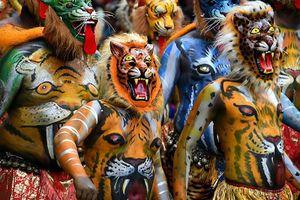 Độc đáo màn múa hổ của người Ấn Độ