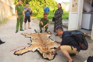 Bắt quả tang 2 đối tượng chở hổ từ Nghệ An về Quảng Ninh để nấu cao
