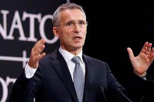 Tổng thư ký NATO cáo buộc Nga chế tạo các tên lửa vi phạm Hiệp ước INF