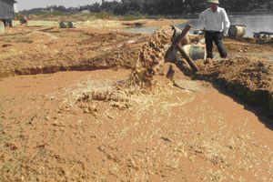 Đang hút cát lậu bất ngờ ngã vào chân vịt sà lan, 1 người tử vong