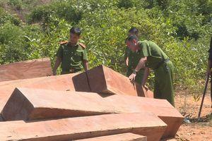 Khởi tố 4 người chặt phá rừng ở Đăk Lắk