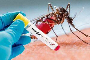 Cung ứng đủ, kịp thời thuốc phòng chống bệnh sốt xuất huyết