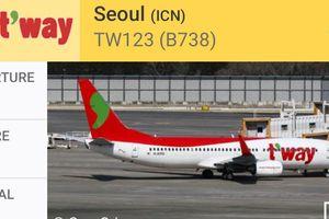 Móp mũi do va vào chim, máy bay Hàn Quốc hạ cánh khẩn xuống Tân Sơn Nhất