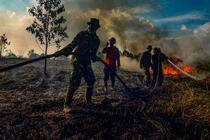 Cháy rừng tại Indonesia đe dọa cuộc sống hàng triệu người Đông Nam Á