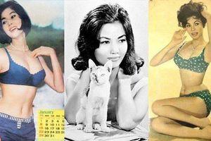 Những mỹ nhân là biểu tượng nhan sắc một thời của làng giải trí Việt