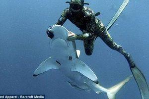 Thót tim xem thợ lặn gỡ lưỡi câu trong miệng cá mập