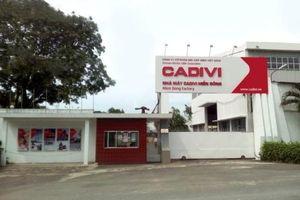 CADIVI bị phạt và truy thu thuế hơn 1,1 tỷ đồng