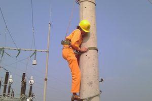 Những cô thợ điện của 'Nhà đèn'
