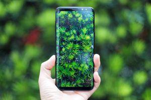 Lộ danh sách smartphone Samsung được lên Android 10