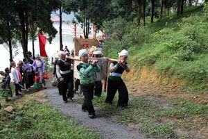 Lên Suối Giàng thưởng trà Shan tuyết