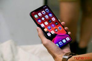 iPhone 11: Càng dìm sâu càng nổi nhanh