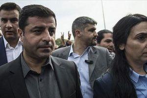 Thổ Nhĩ Kỳ mở cuộc điều tra mới nhằm vào chính trị gia người Kurd